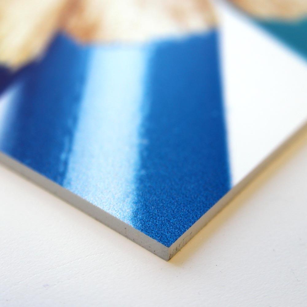 Foamex Display Boards & Signs printed in Luton. Foamex Boards ...